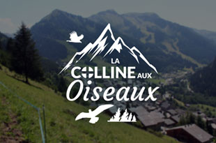 Chalet La Colline aux Oiseaux - location chatel, multipass chatel, location appartement chatel, l'echo des montagnes chatel